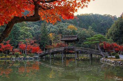 Concetti di architettura giapponese giardini - Giardini giapponesi ...